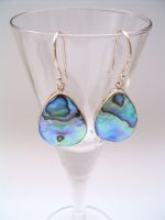 Paua Shell Teardrop Earrings
